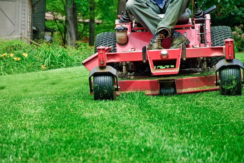 Lawn mowing can lead to grass stains on your carpets!