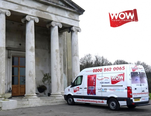 Wow Carpet Cleaning launch our blog