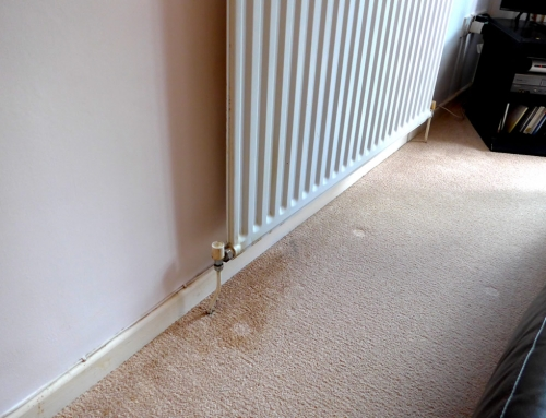 Removing radiator water or rust stains from carpet and upholstery