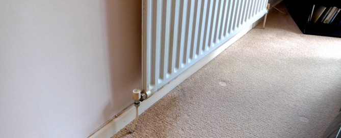 Radiator Water Carpet Stain
