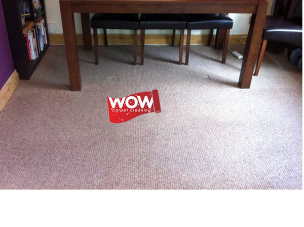 Red Wine Carpet Stain After Cleaning Wow Carpet Cleaning
