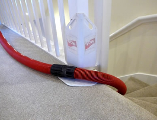 Professional Stain Removal and Carpet Cleaning in 2018