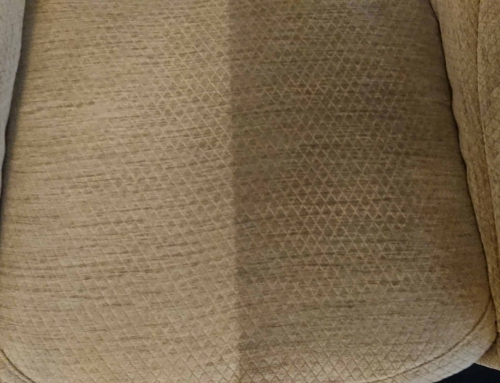 Amazing upholstery cleaning!
